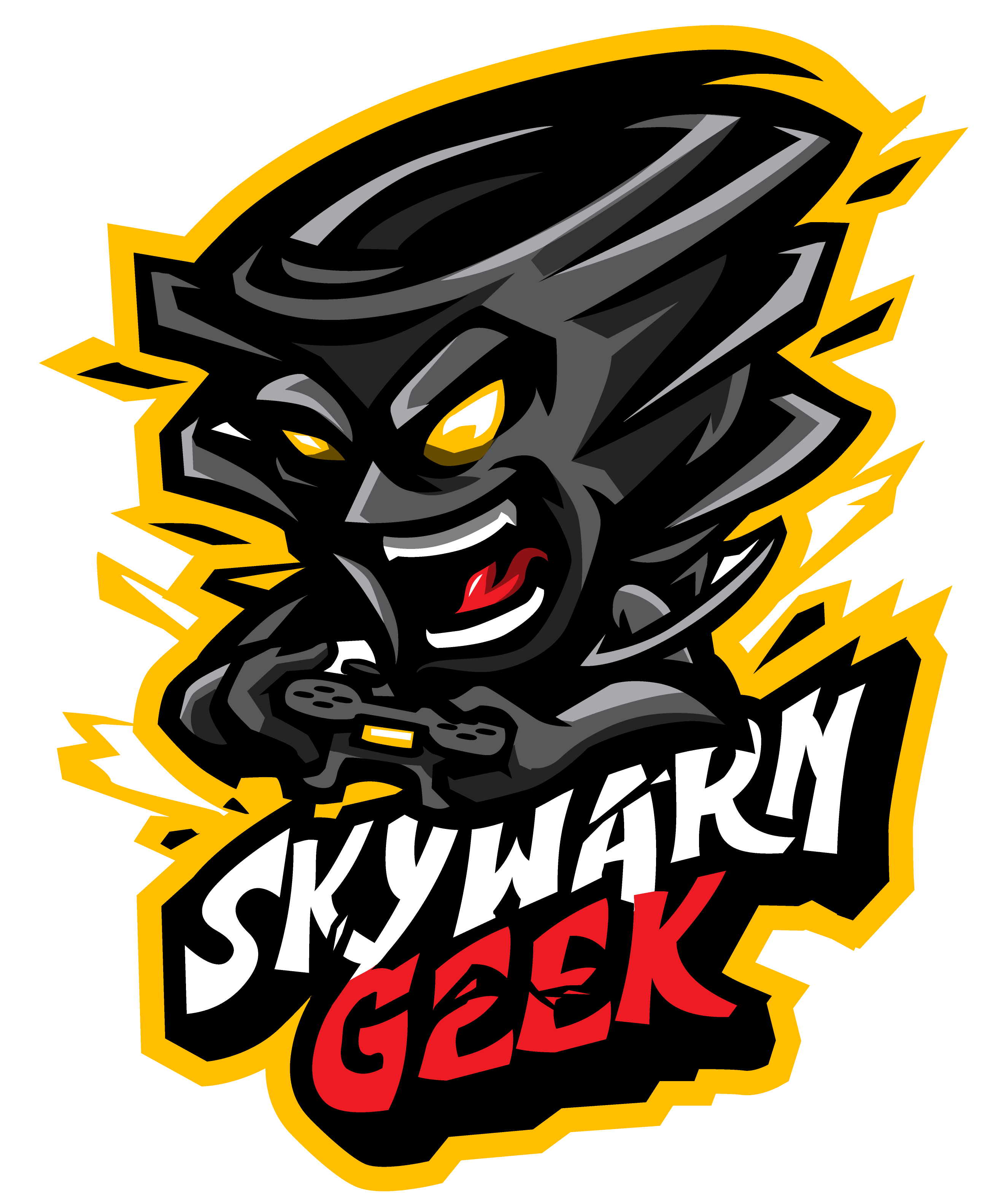 Large Skywarn Geek Logo